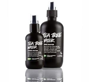 404-Tea-Tree-Water-resized
