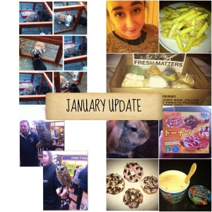 january favourites collage
