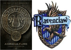 district 11 raven claw collage