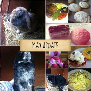 may update 2014