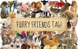 furry friends tag